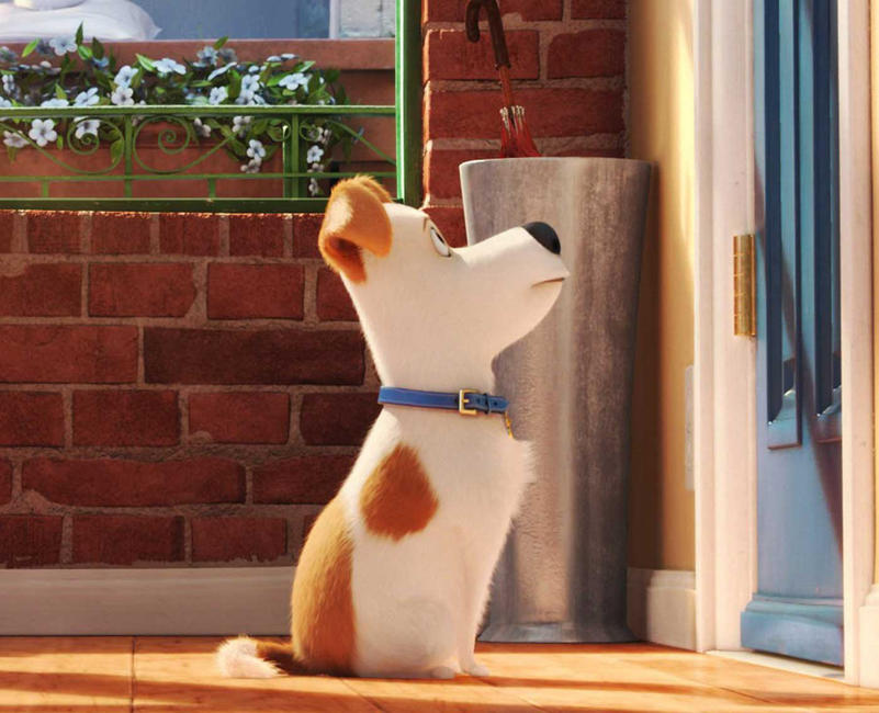 The Secret Life of Pets Photos + Posters
