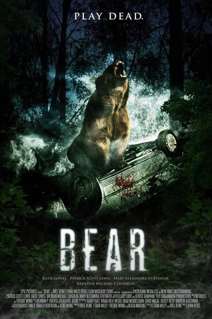 Bear Photos + Posters