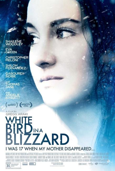 White Bird in a Blizzard Photos + Posters
