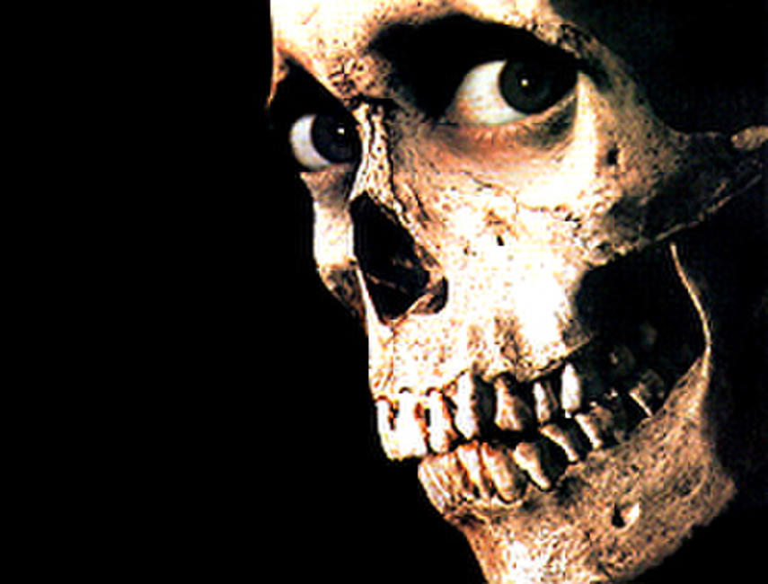 Evil Dead II: Dead by Dawn Photos + Posters
