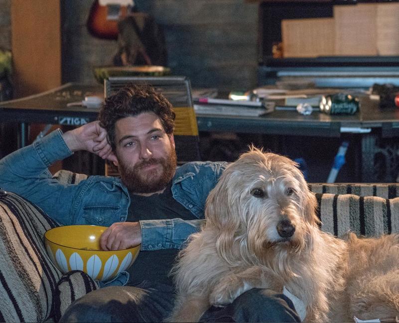 Dog Days (2018) Photos + Posters