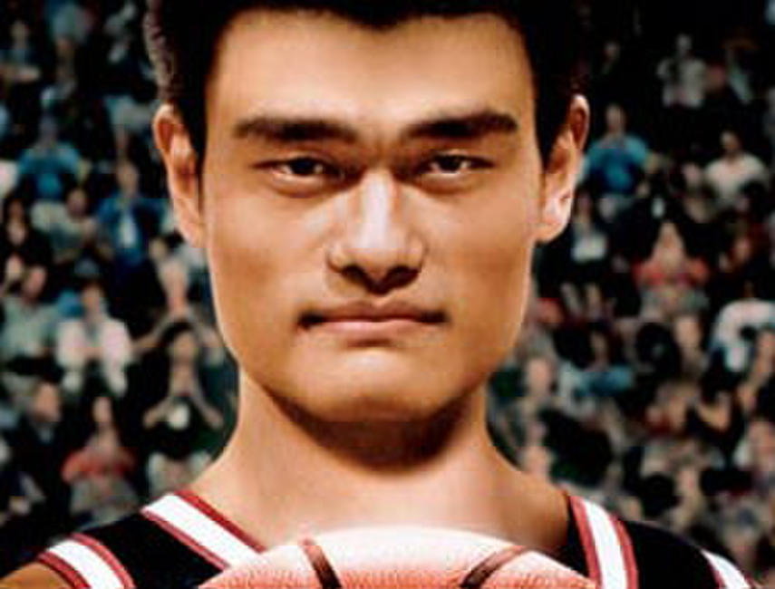 The Year of the Yao Photos + Posters