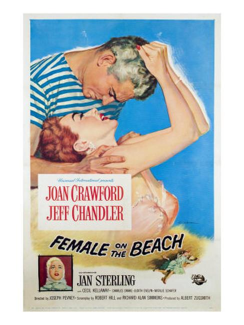 Female on the Beach/Hazard Photos + Posters
