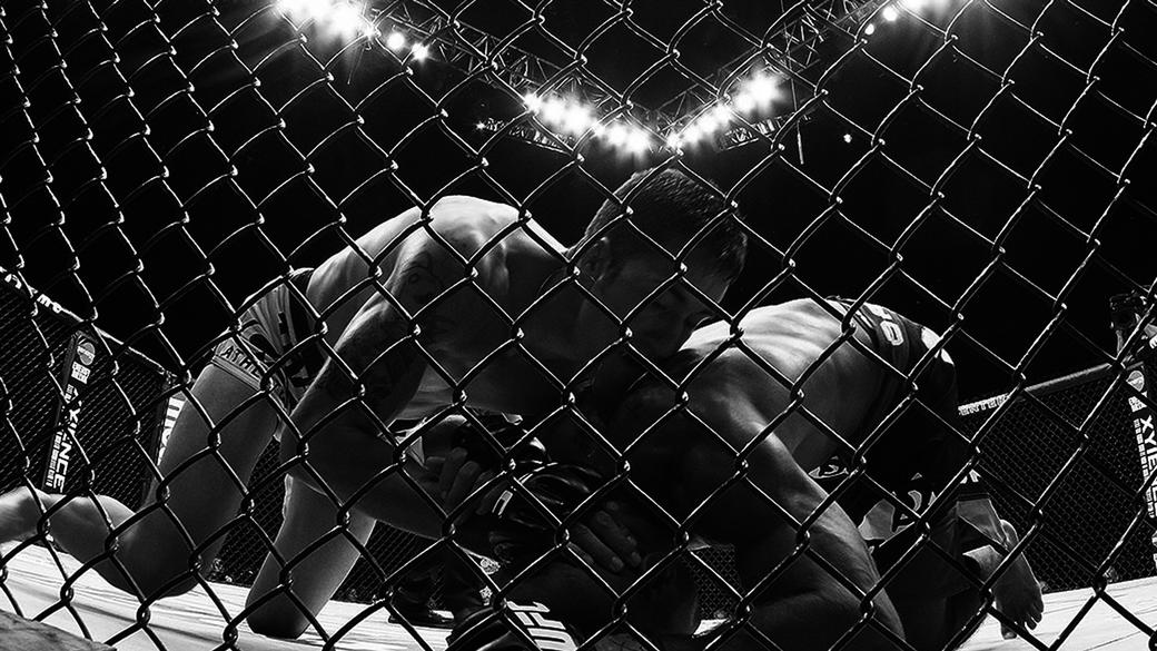 The Fight Within Photos + Posters