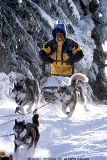 Snow Dogs Photos + Posters