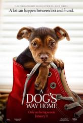 A Dog's Way Home showtimes and tickets