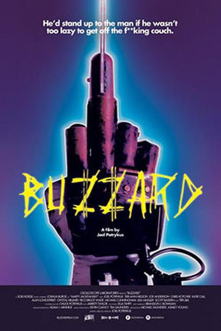 Buzzard Photos + Posters