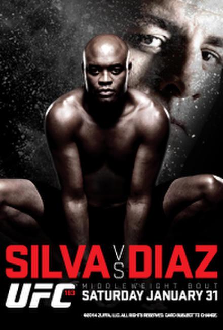 UFC 183: Silva vs. Diaz Photos + Posters