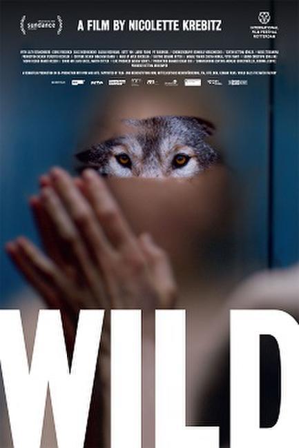 Wild/Aloys Photos + Posters
