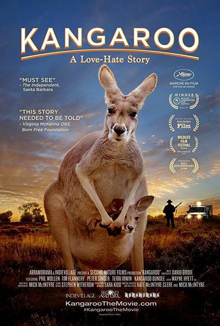 Kangaroo Photos + Posters