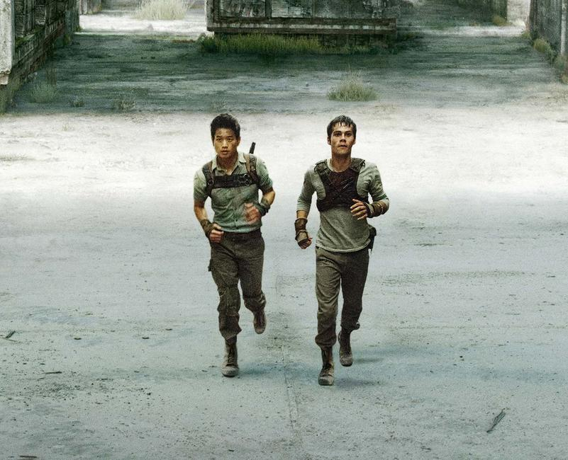 The Maze Runner (2014) Photos + Posters