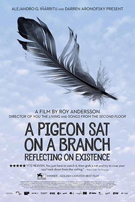 A Pigeon Sat on a Branch Reflecting on Existence Photos + Posters