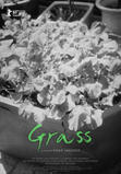 Grass (2019)