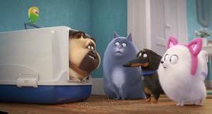 'The Secret Life of Pets 2': Here's How To Be The First To See The Movie 2 Weeks Early