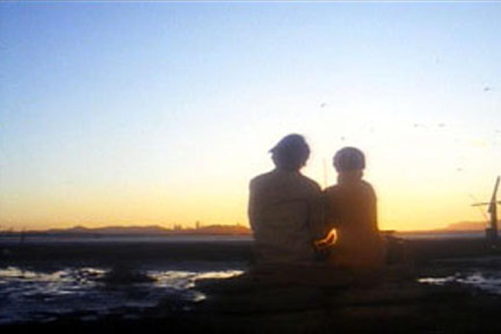 Harold and Maude Photos + Posters