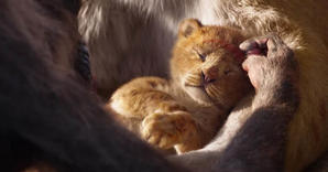 Five Reasons We Just Can't Wait to See 'The Lion King'