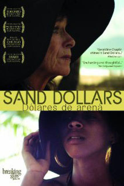 Sand Dollars Photos + Posters