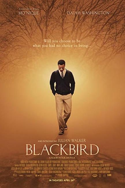 Blackbird  Photos + Posters