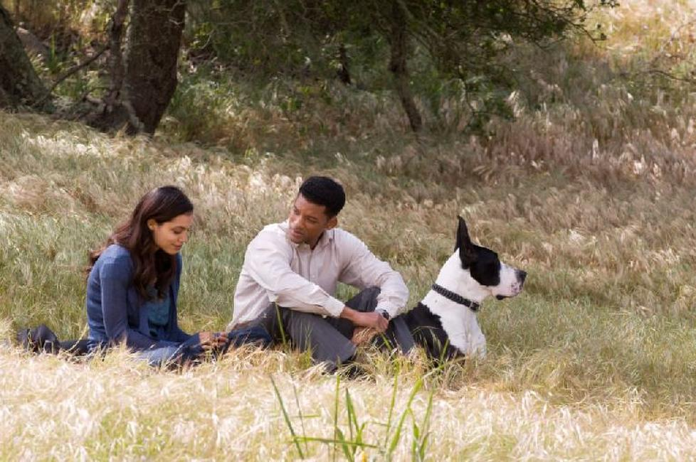 Seven Pounds Photos + Posters