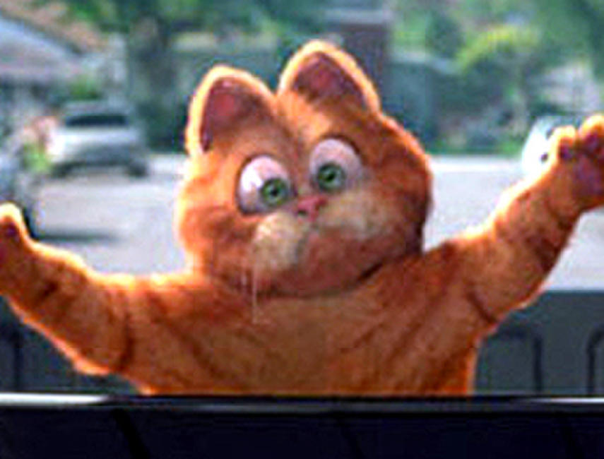 Garfield: A Tail of Two Kitties Photos + Posters