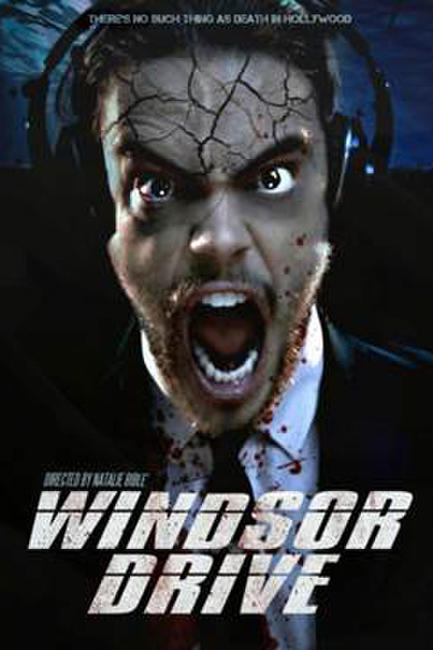 Windsor Drive Photos + Posters