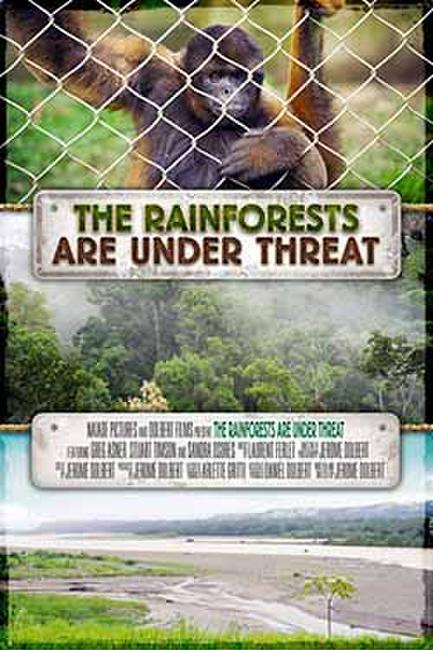 HFF 15: The Rainforests are Under Threat Photos + Posters