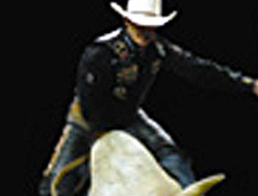 Bullrider Photos + Posters