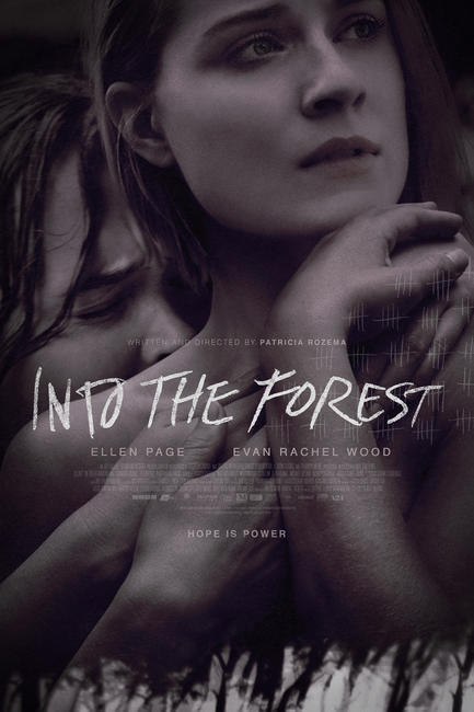 Into the Forest Photos + Posters