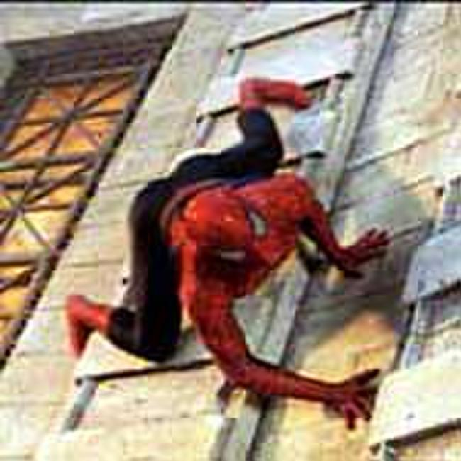 Spider-Man - Spanish Subtitles Photos + Posters