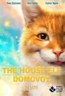 The House Elf/Domovoy