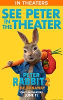 Peter Rabbit 2: The Runaway poster
