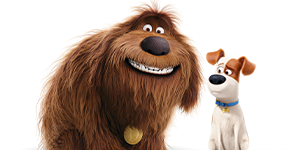 <b>'Secret Life of Pets' Sweepstakes</b>