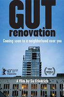 Gut Renovation