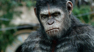 News Bites: Watch the Final 'Dawn of the Planet of the Apes' Trailer