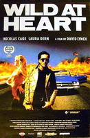 Wild At Heart / The Sugarland Express